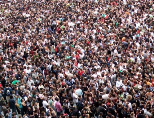 Социальные услуги в исполнении НКО – ожидания и риски